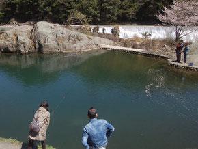 花の木公園の施設、釣り堀ではマス釣りが楽しめる