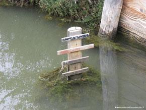 Echelle au niveau de l'eau permettant de mesurer la hauteur de la lame d'eau dans les canaux et les bassins.