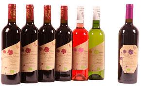 AOC vin de Bergerac et Côtes de Bergerac, certifiés BIO - Château Tertres du Plantou