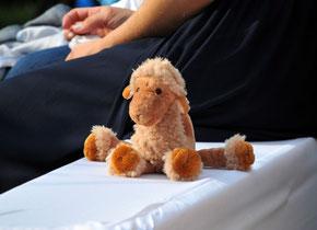 Unser kleiner Star der Trauung: mit diesem Kamel hat Sascha seine Ann-Katrin bei ihrem Vater ausgelöst!