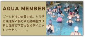 プールだけの会員の料金表へリンクしています。