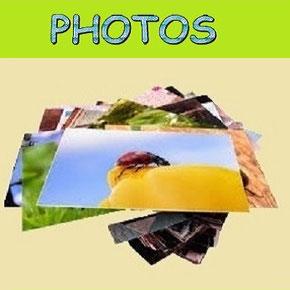 Pour consulter l'extrait du règlement du tarot et voir les photos de nos parties amicales, cliquez sur l'image.