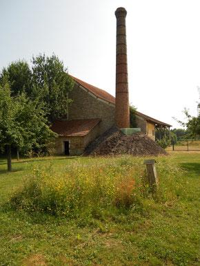 SAVIGNY LE TEMPLE Ferme du Coulevrain / le verger et la distillerie