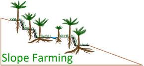 Slope Farming Logo by Jan Wibbing
