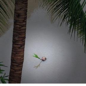 Eine Kokosnuss die eine kleine Palme trägt auf Ihrem Weg zu neuen Ufern!