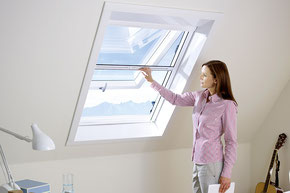 Insektenschutz, Fliegengitter, Dachfenster