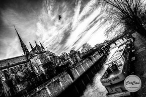paris, notre dame de paris, photo noir et blanc, black and white, art, street photography, CarCam