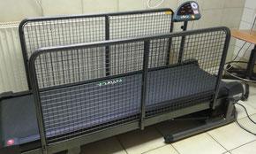 Modernes Laufband auch für große Hunde
