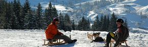 Schlittelplausch von Gstaad-Höhi Wispile nach Gsteig