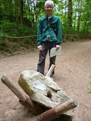 Auf dem Gesteinslehrpfad im Saarbrücker Wildpark