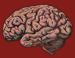 """Wenn """"Ich"""" entscheide kann es sein, dass Erziehung, Trauma und rationale Bildung mehr Entscheidungskraft haben, als die ursprüngliche, eigene Lebenskraft."""