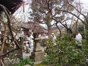 元慶寺の法楽