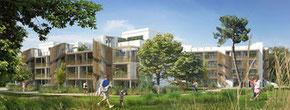 Projet architecte de l'habitat participatif Terra Arte