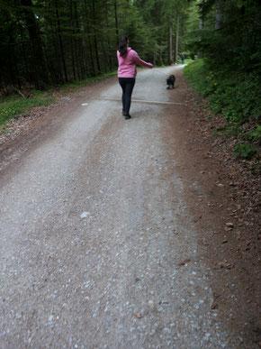 Shorty mit seiner Sitterin Viola auf dem Weg zur Arzler Alm