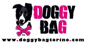 Agility dog Viareggio , addestramento cani , addestratre cinofilo ENCI , Corso agility dog Versilia , Corso cuccioli , Centro cinofilo GASDOG Viareggio , Lucca , Pietrasanta , Lido di camaiore , Pisa , educazione Base , Rally-o , tricks , Disc Dog