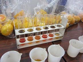 溶液を使い、酸度を測ります。