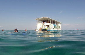 snorkelling guadeloupe