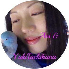 あおいの名前は地球の意味 立花雪 YukiTachibana