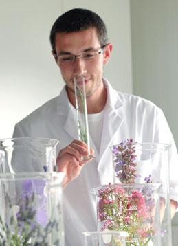 Was Farben mit Wohnungen machen (NZZ)
