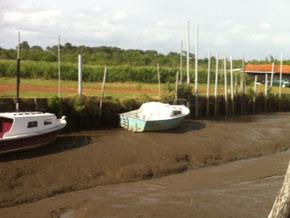 marée basse au port des Tuiles