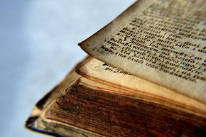 La parabole du maître de la vigne enseignée par Jésus-Christ dans les Evangiles.