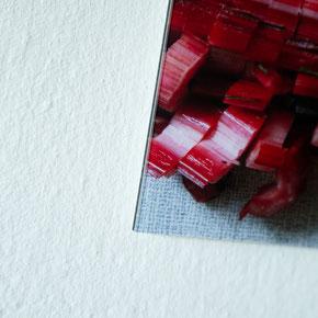 Lamba C-Print auf Alu DIBOND hinter Acrylglas