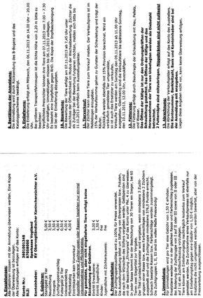 Seiten 2 und 3 der AO