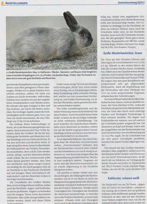 Kaninchenzeitung 9/2013 S. 38