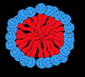 Seifenkugel (Mizelle) in einer Seifenlösung