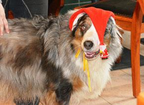 """""""Santa""""-Bjössi"""