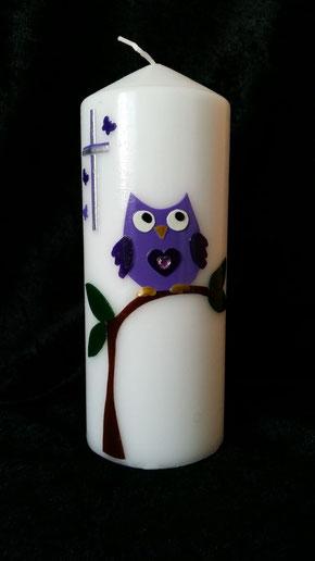 Eule auf Baum Violette