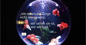 Anaïs Nin, Gestalttherapie, Praxis für Psychotherapie Barbara Schlemmer, Dipl. Psychologin