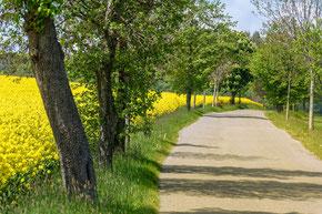 Pausentage Juli Praxis für Psychotherapie Barbara Schlemmer Dipl. Psychologin Saarwellingen