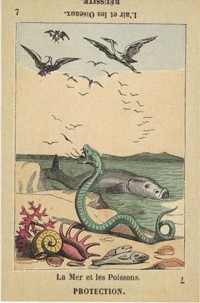 エッティラのタロット 魚は、プロテクションを表している