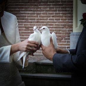 Glücksymbol Hochzeitstauben
