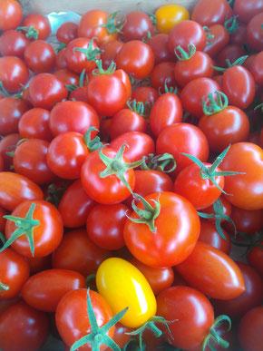 廣田農園のイチオシ野菜 ミニトマト