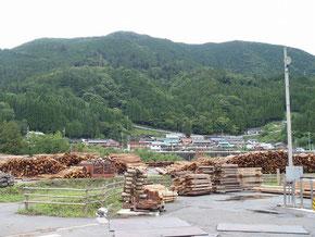 台風通過後のセンター貯木場