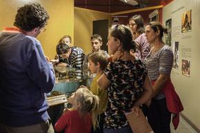 Visite guidée hebdomadaire au Musée d'Archéologie de Sollières Sardières