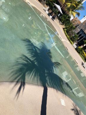 revente T2 appartement de luxe jinvesty plage à pieds Mont choisy ile maurice