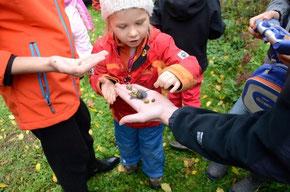 Die Kinder zeigen, welche Schnecken sie im Garten gefunden haben. - Foto: Britta Raabe