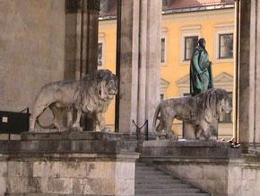 """auf zur """"Löwenjagd"""" am Odeonsplatz"""