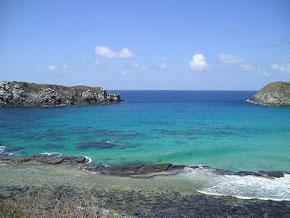 和歌山 白浜 フェルナンドノローナ島