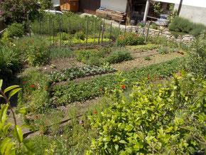 Bauerngarten in der Lingstraße