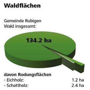 Die von der Überbauungsordnung (UeO) Kiesabbau Rütiweid betroffene Fläche umfasst weniger als 3% der gesamten Waldfläche in der Gemeinde Rubigen.