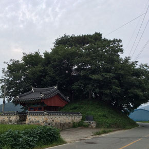 崔(チェ)将軍の祠堂。後のこんもりした丘がいかにも韓国の堂山という感じです。