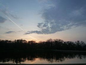 遠くに飛行機雲。