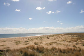 wunderschöner langer goldgelber Sandstrand bei Dornoch