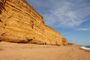 Ockerfarbene Sandsteinfelsen der Jurrassic Coast