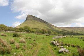 der Tafelberg Benbulben nördlich von Sligo