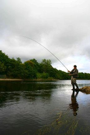 River Moy